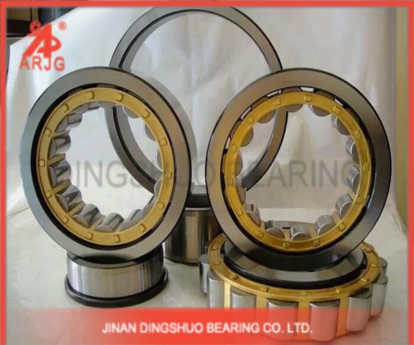 Professional Cylindrical Roller Bearing (ARJG, SKF, NSK, TIMKEN, KOYO, NACHI, NTN)