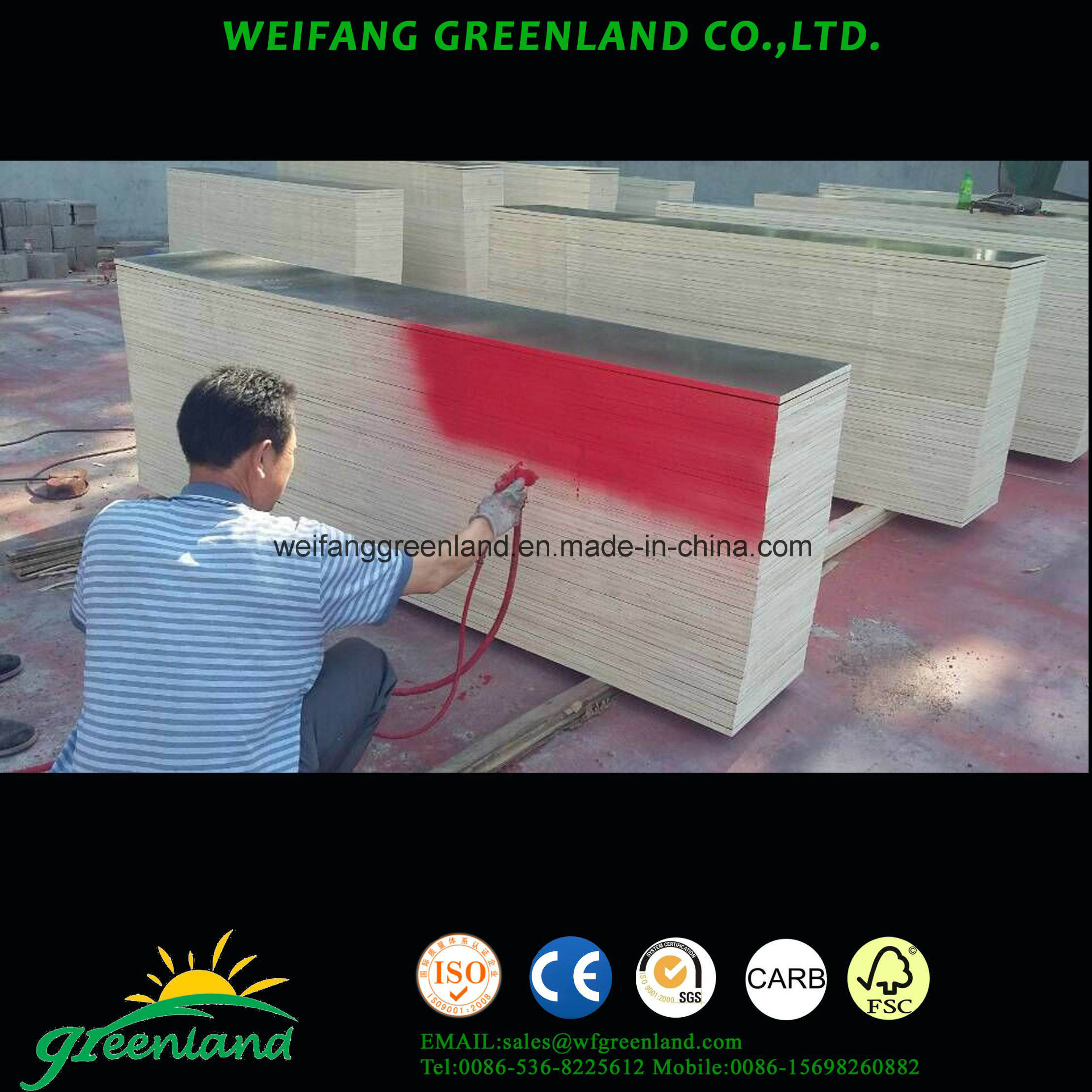 Hardwood Core, WBP Glue, Special Size Shuttering Film Faced Plywood for Construction