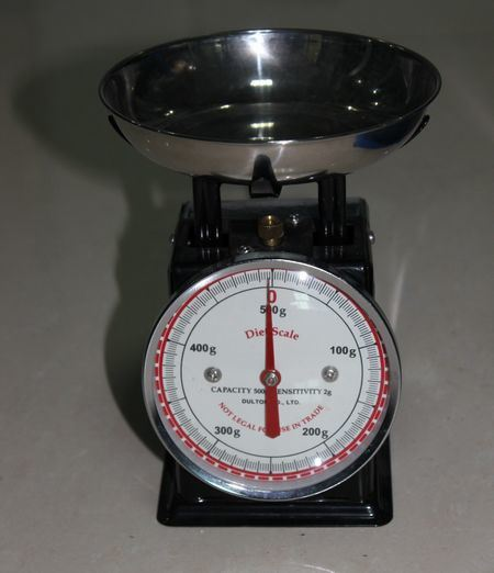 500g Manual Metal Spring Scale