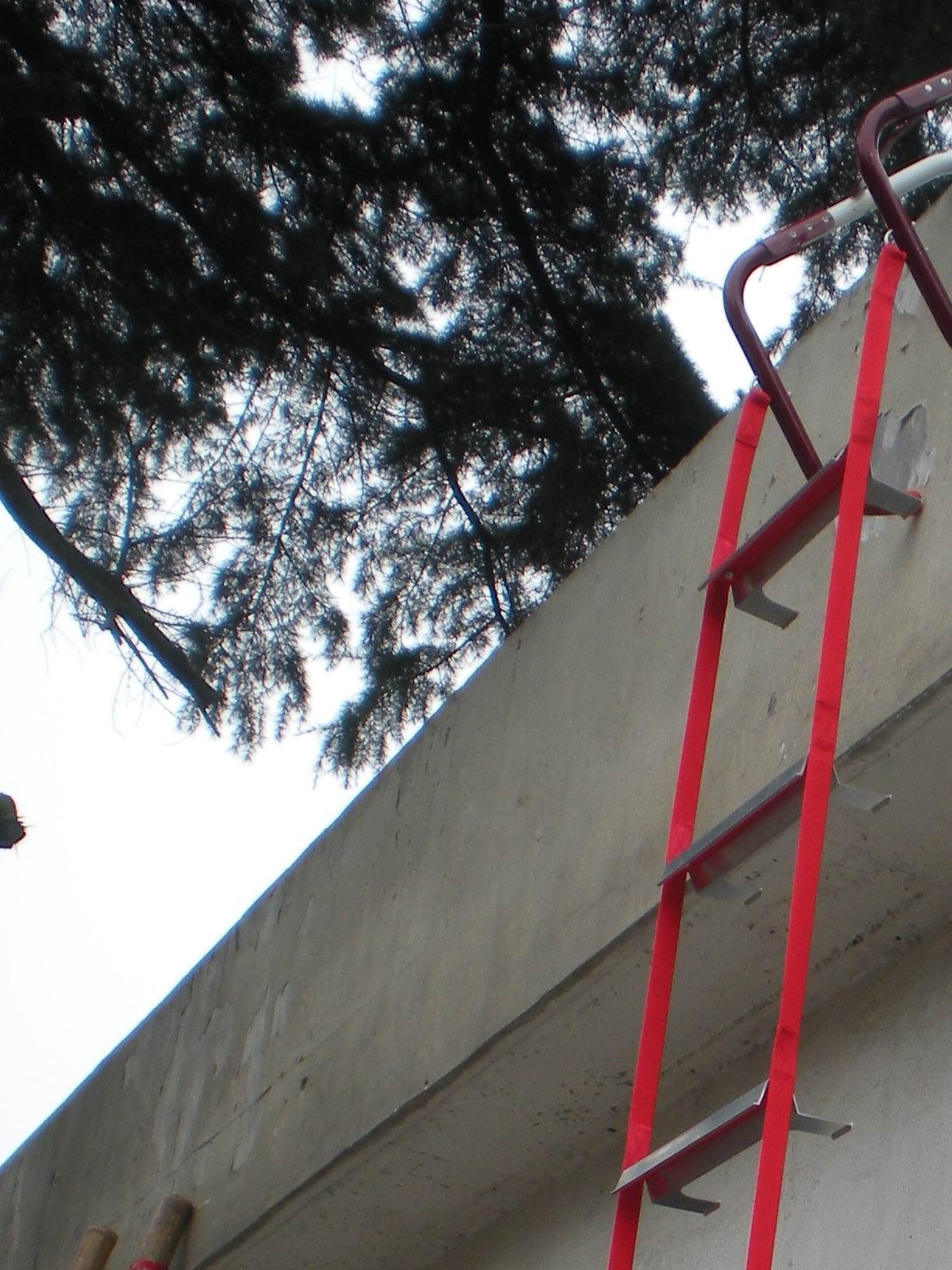 Escape Ladder (CMAXEL001)