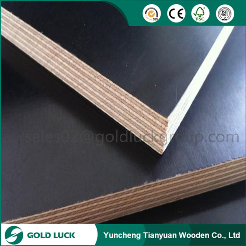 15mm/17mm/18mm Black Waterproof Concrete Forming Film Faced Plywood