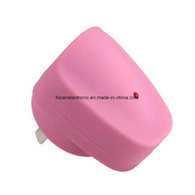 Meps C-Tick SAA Certificate Au Plug USB DC/AC Adapter for Samsung and iPad
