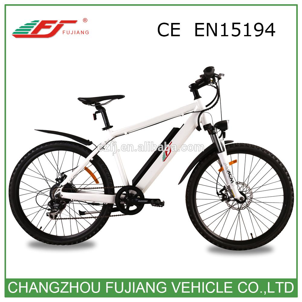 Hot Sale Ce En15194 Road Electric Bike