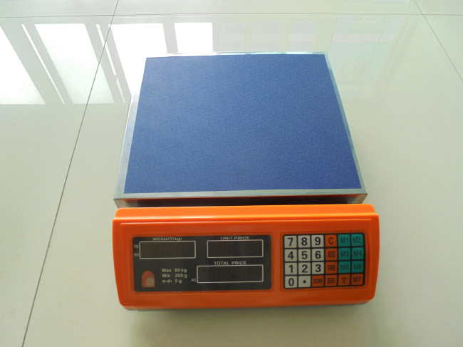 Digital Platform Scale Tcs-700