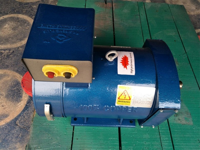 St Series Single Phase Alternator Excellent Quality