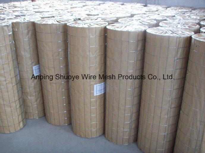 Welded Wire Mesh Made of Galvanized, PVC or Stainless Steel Wire