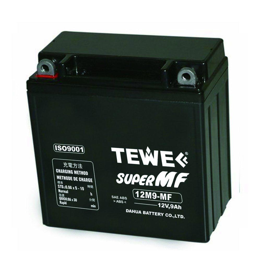 Tewe 12V 9ah Sealed Maintenance Free Motorcycle Battery