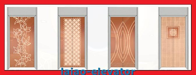 630kgs Home Elevator Passenger Lift Hot Sale
