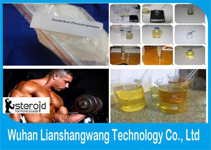 Npp Nandrolone Phenylpropionate (Durabolin) CAS 62-90-8 for Fat Burning