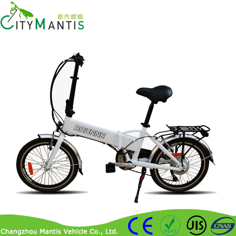 250W 36V Lithium Battery Mountain Ebike