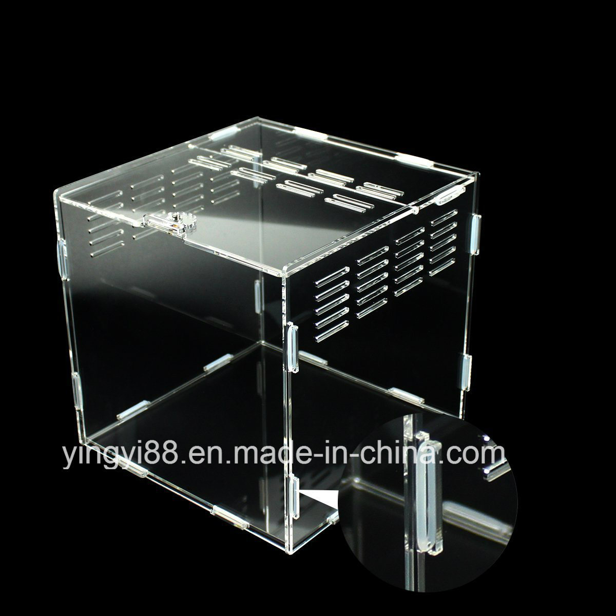 Top Quality Acrylic Reptile Display Box Shenzhen Factory