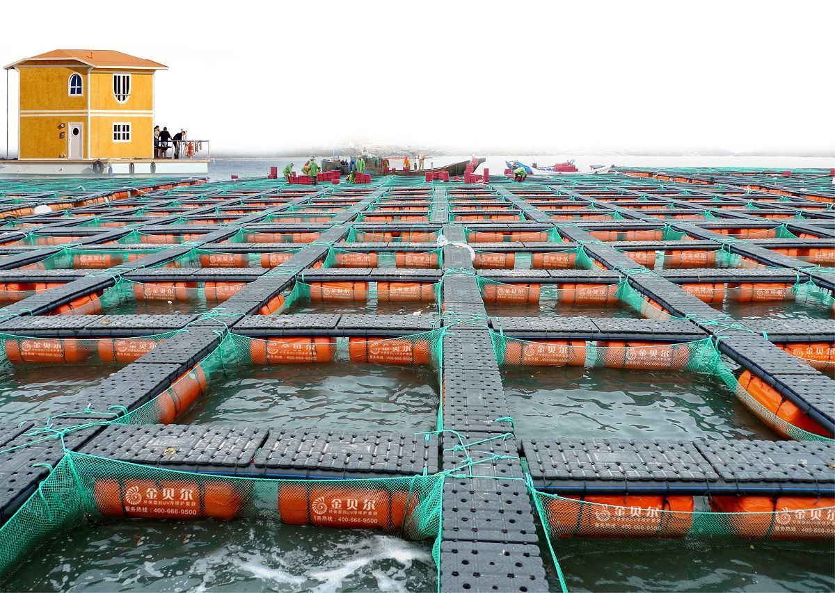 Cage making for fish farming