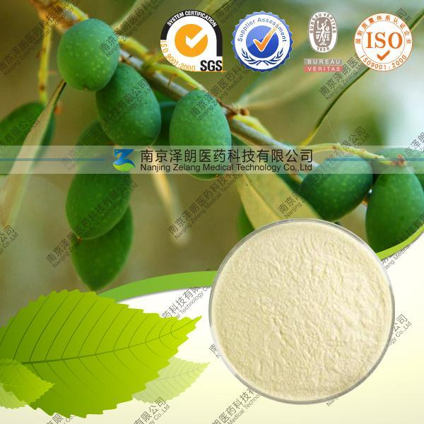 Best Price Natural Olive Leaf Extract Liquid & Powder10%20%30%40%50%60%HPLC