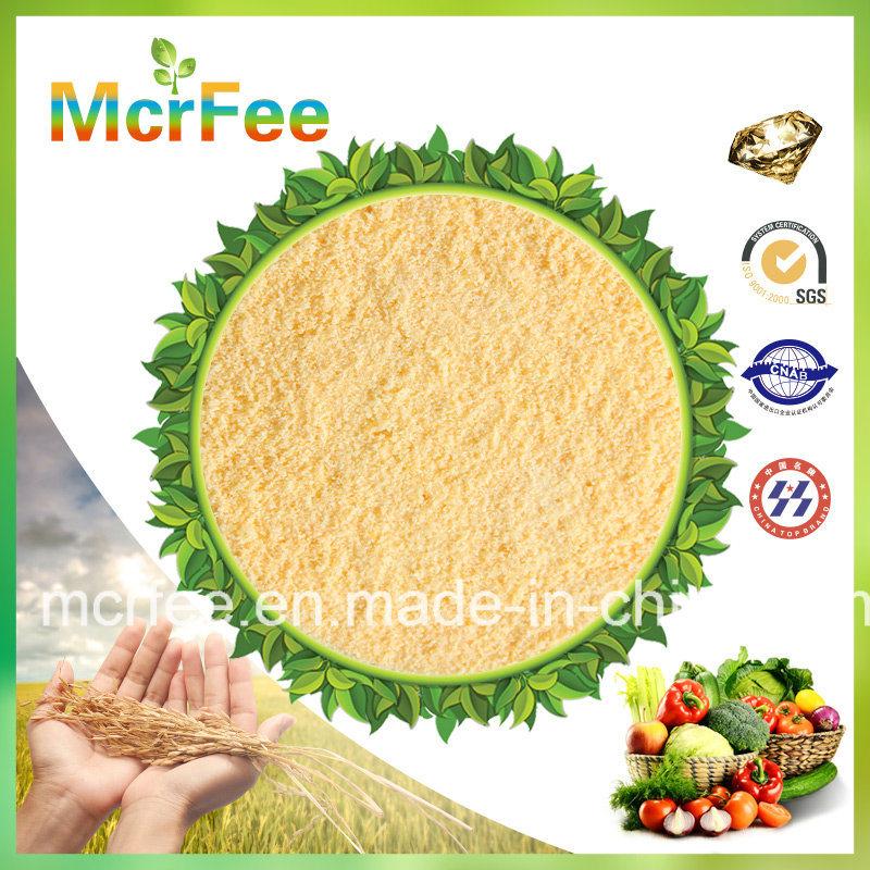 Factory 100% Water Soluble Fertilizer 18-18-18 /15-15-30+Te