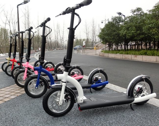 300 W Foldable Electric Scooters with Lithium Battery