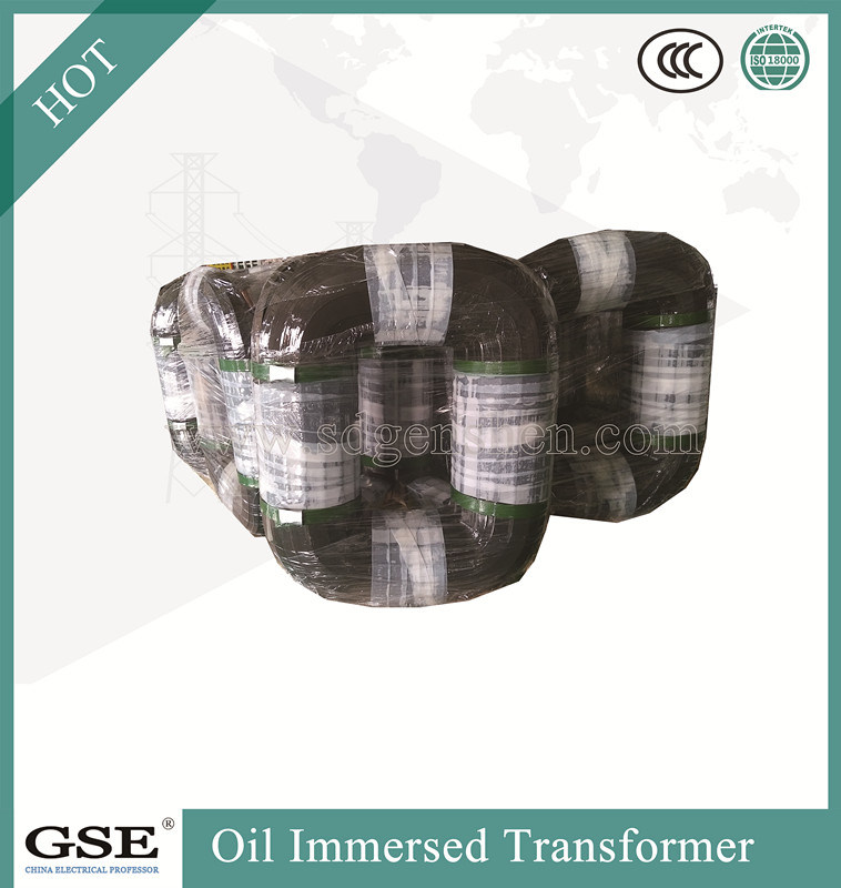 S13-Mr-L 30-2500 kVA Three-Phase Oil-Immersed Fully-Sealed Power/Distribution Transformer