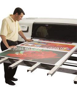 Corona Treated PP Corrugated Sheet/ PP Hollow Sheet/ Correx Board for Printing