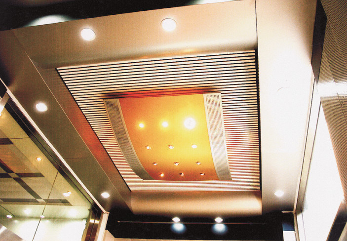 Aluminium Decorative Non-Standard Ceiling