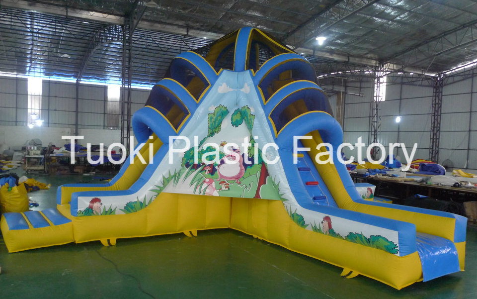 Inflatable Water Slide for Kids Game (RC-014)
