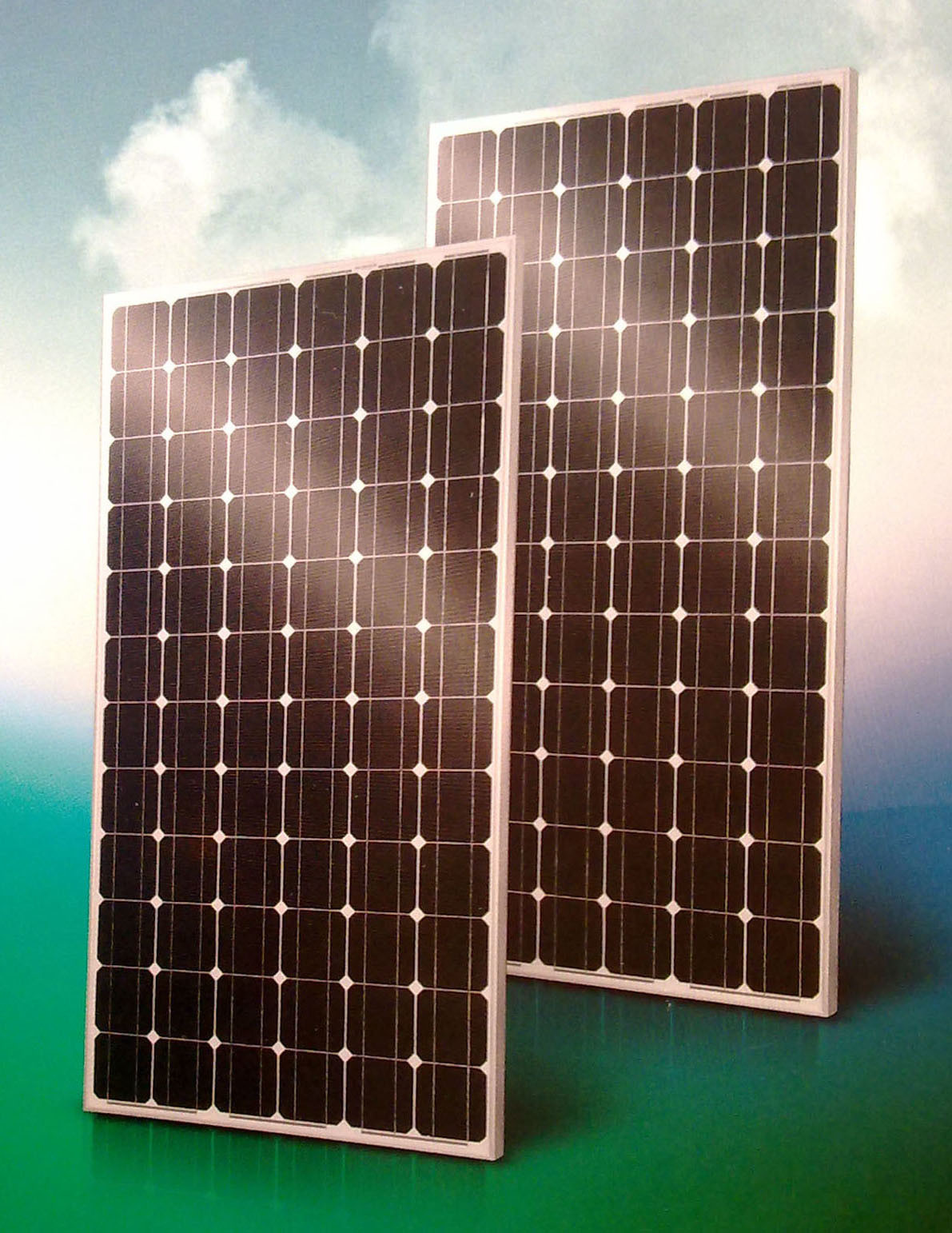 Solar PV Module Panel (BLD-72-5M)