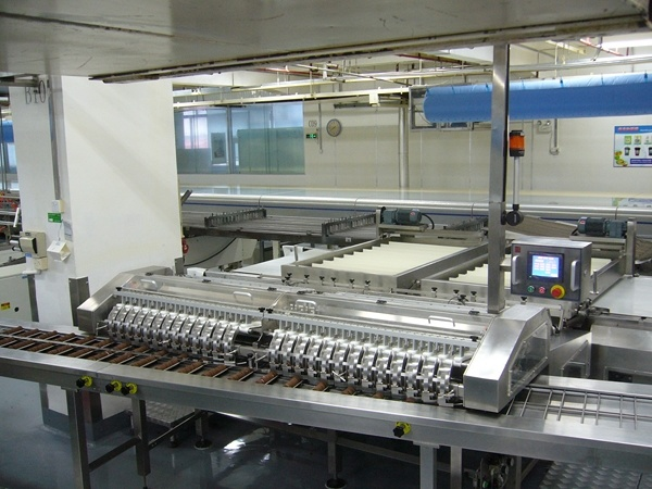 Biscuits on Edge Tray Loader/ Trayless Packing Machine Feeder