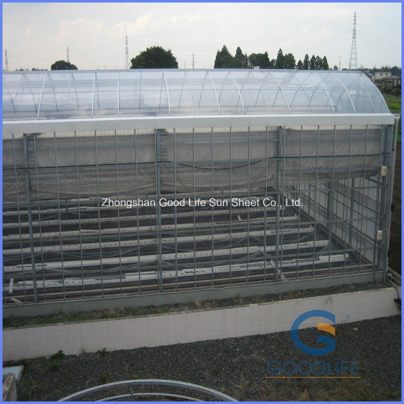 Production/Experiment /Commercial Large Small Polycarbonate Greenhouse for Plastic Sheet