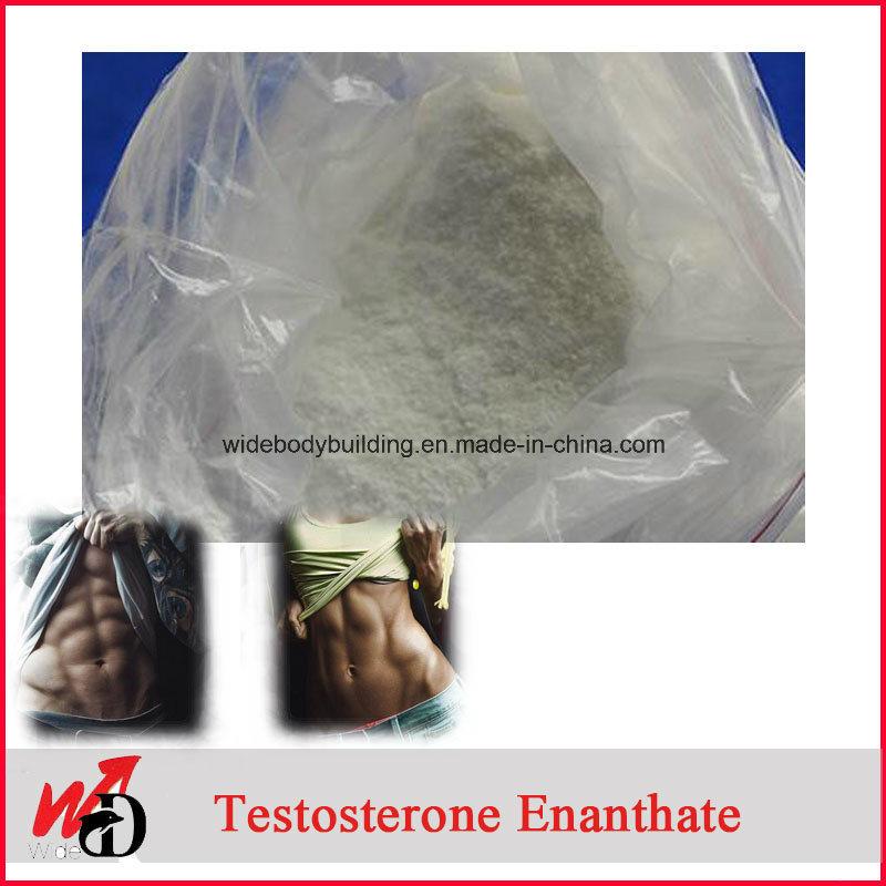 Bodybuilding Gain Lean Muscle Steroids Test E Testosterone Enanthate