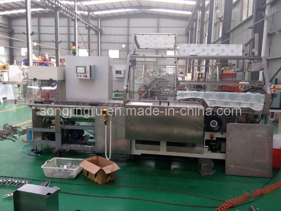Cartoning Machine (AZC250)