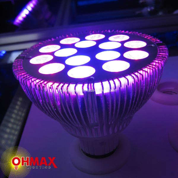 china indoor growing 15w spot led grow light china sport led grow