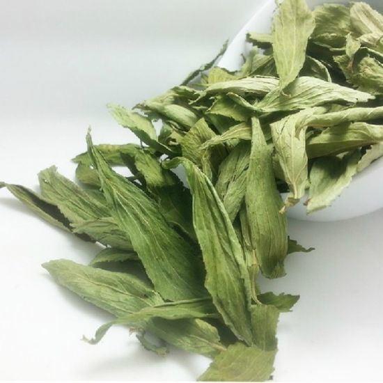 Stevia Leaves Healthy Tea
