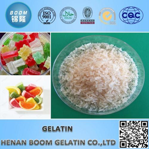 Hydrolyzed Gelatin Powder Fish Gelatin Granular