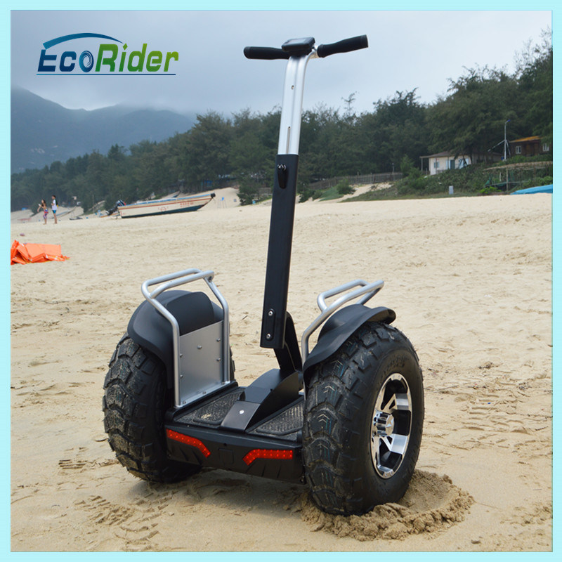 Foldable Adult Exercise Sport off Road Electric Bike (ESOI)