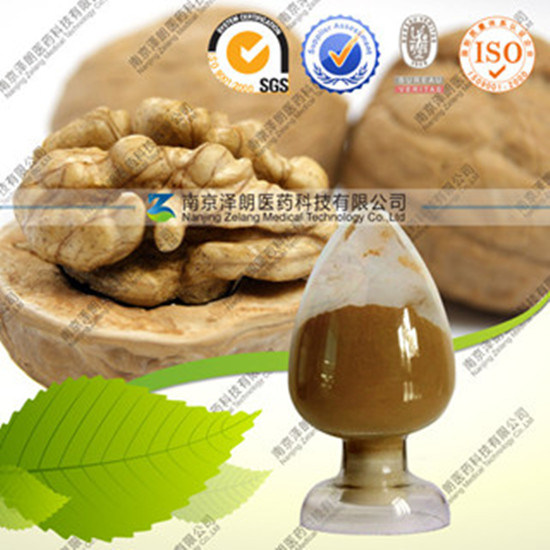 Factory Direct Supply Natural Peach Seed P. E.