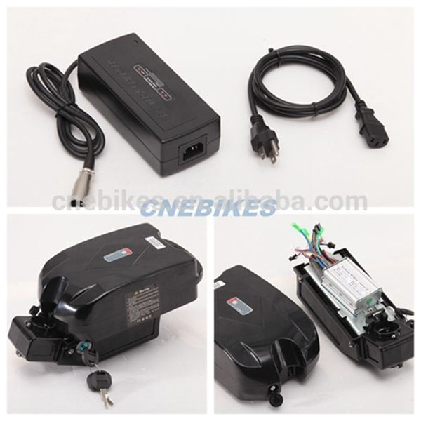 36V 10ah Seat Post Type Lithium Battery with Charger for Electric Bike