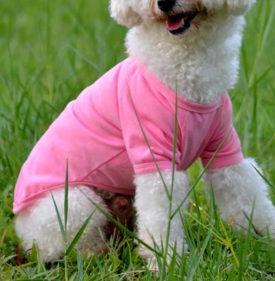 Dog T-Shirt Pet Product Dog Apparel
