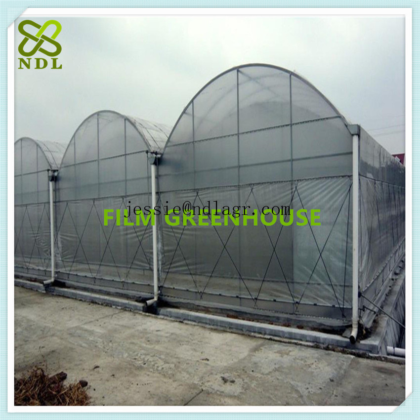 Double Inflated Plastic Film Green House