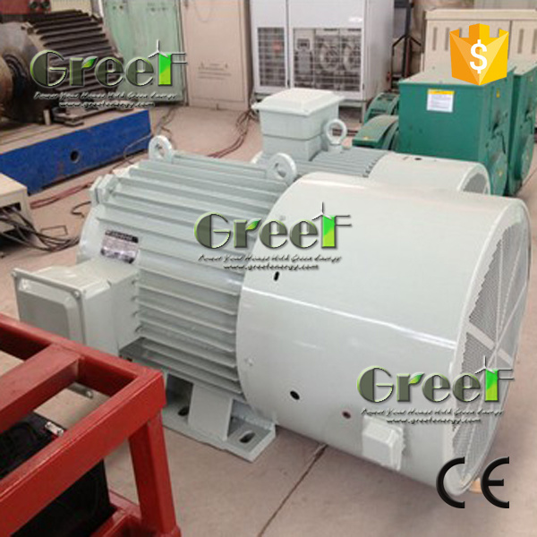 Synchronous Permanent Magnet Generator 20kw 250rpm with Stainless Steel