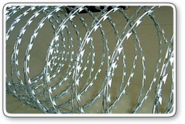 Supplier of Razor Barbed Wire for Mesh Fence