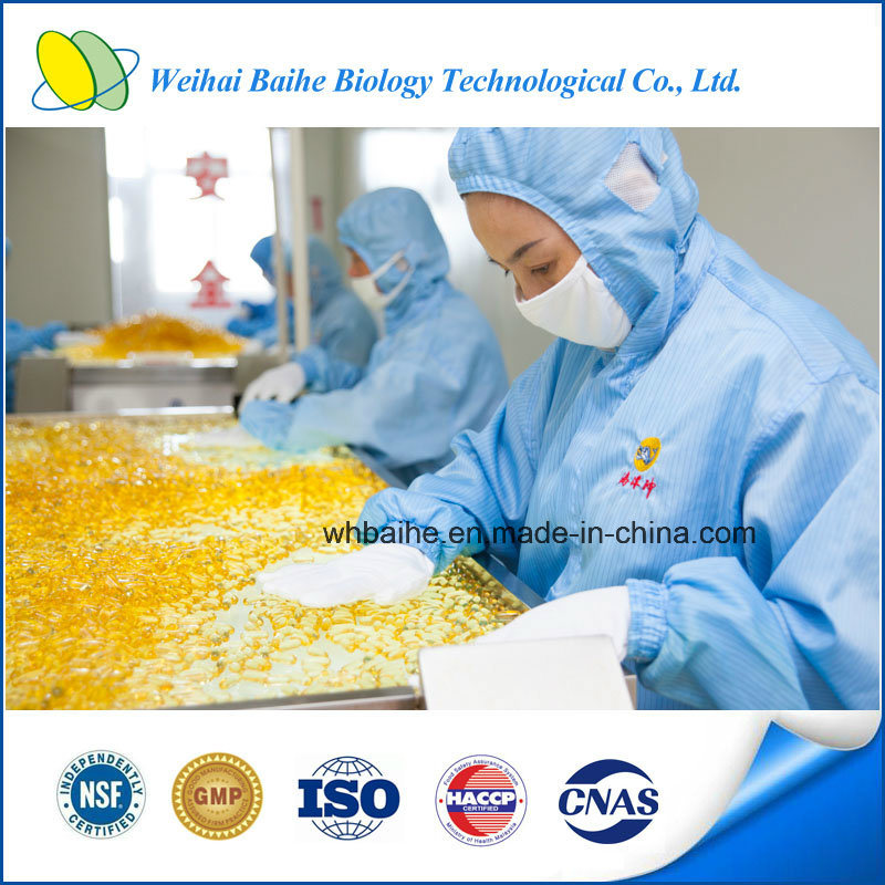 GMP Certified Nutritional Supplement Fish Oil Manufacturer