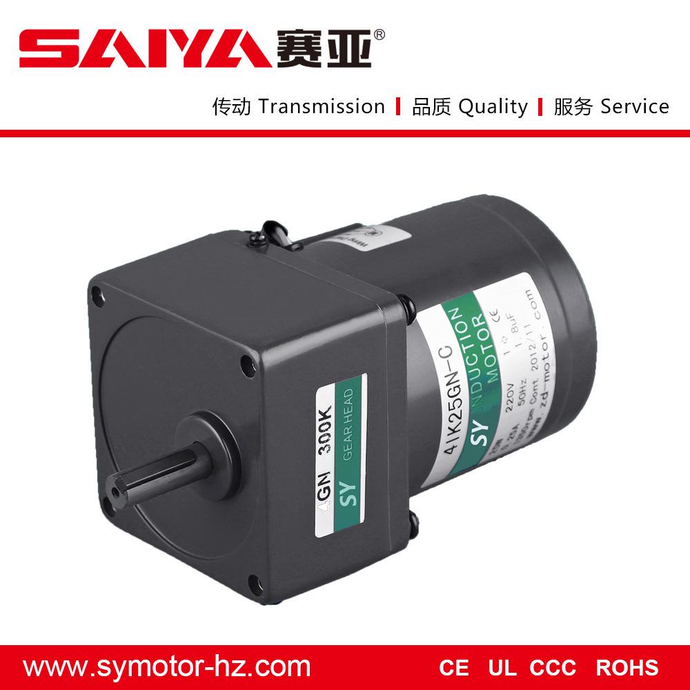 25W General Induction AC Gear Motor Electrical Motor