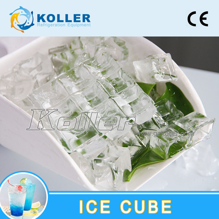 10 Tons/Day CE Approved Ice Cube Machine