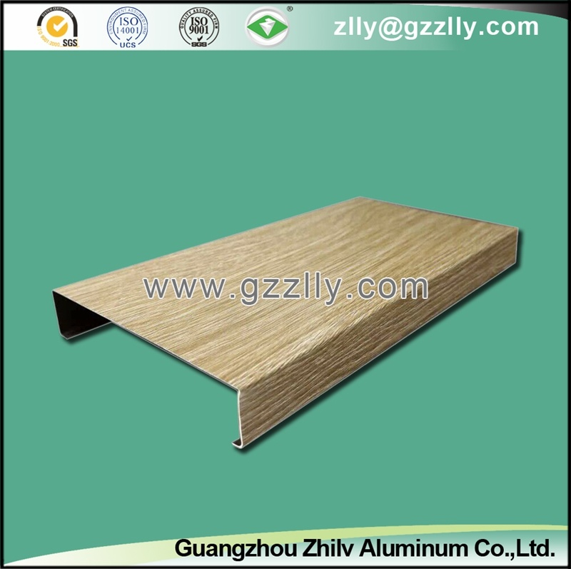 Ventilative Aluminum Ceiling panel for Building Decoration