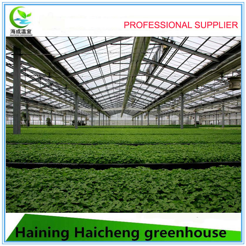 Modern Solar Intelligent Agriculture Greenhouse