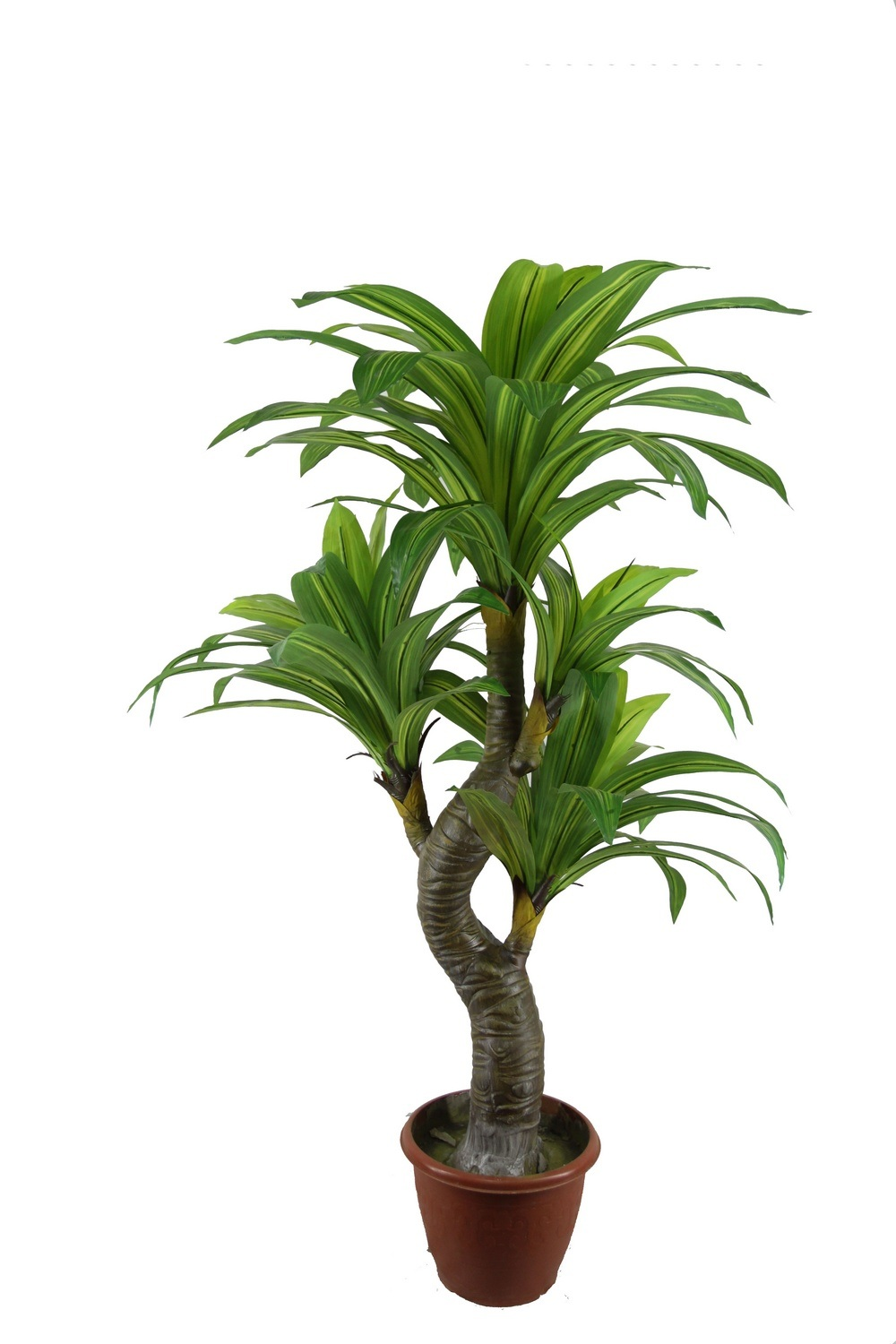 China artficial dracaena tree emulated dracaena plants for Plante dracaena