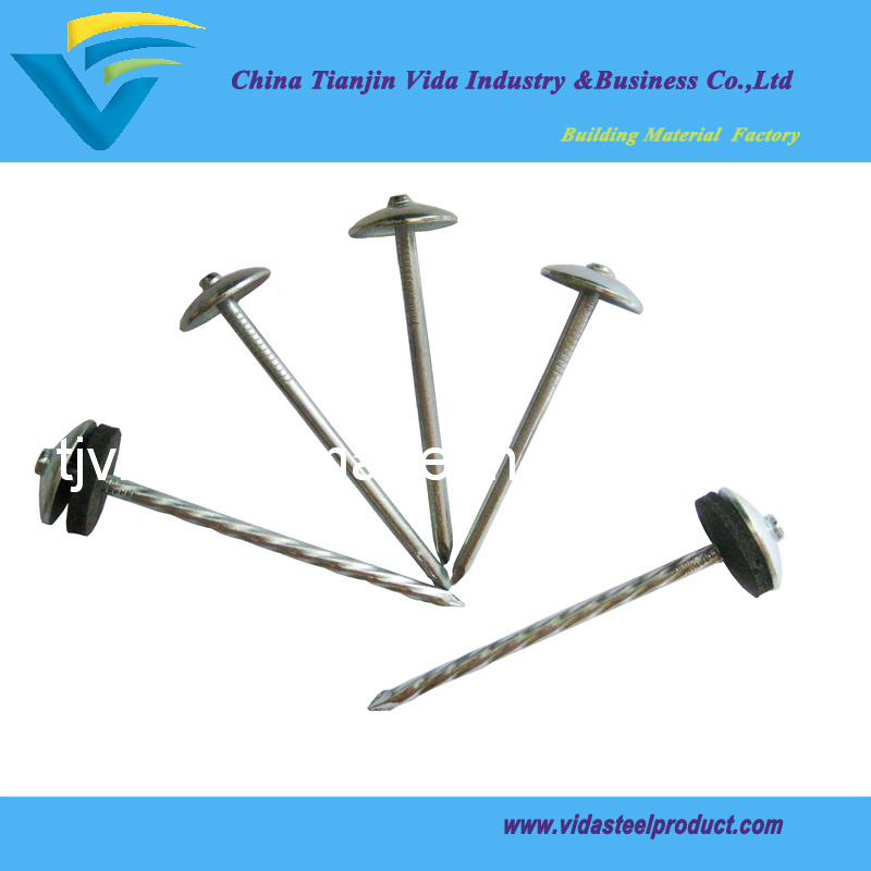 Umbrella Head Roofing Nails (8G-13G)