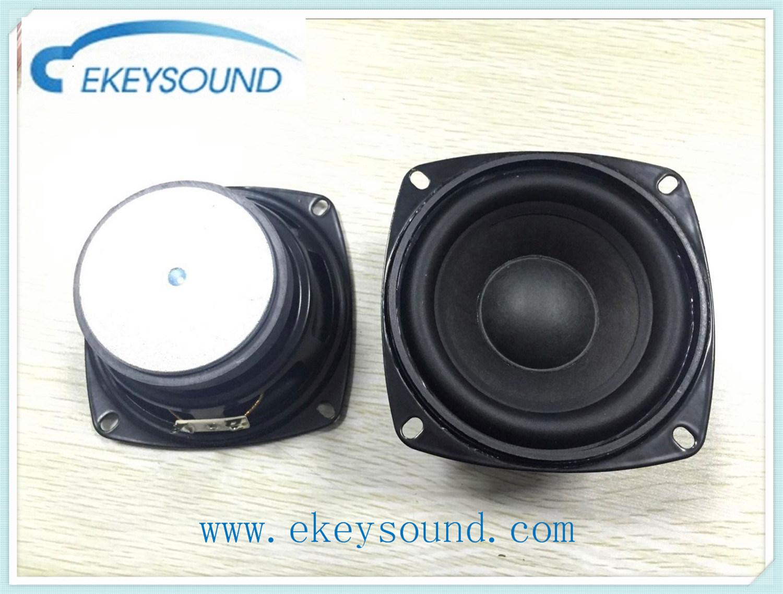 30W Loud Speaker