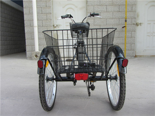 24 Inch New Deisgn Fashion Bike Adults Cargo Electric Tricycle with En15194