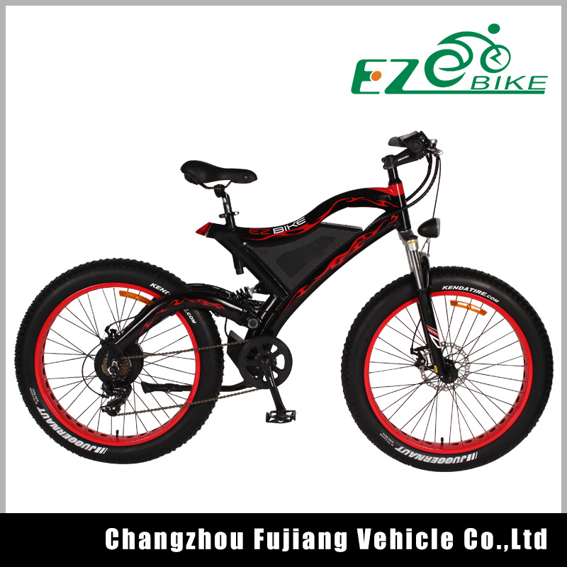 48V Battery 1000W Electric Fat Bike Suitable for Mountain Roads