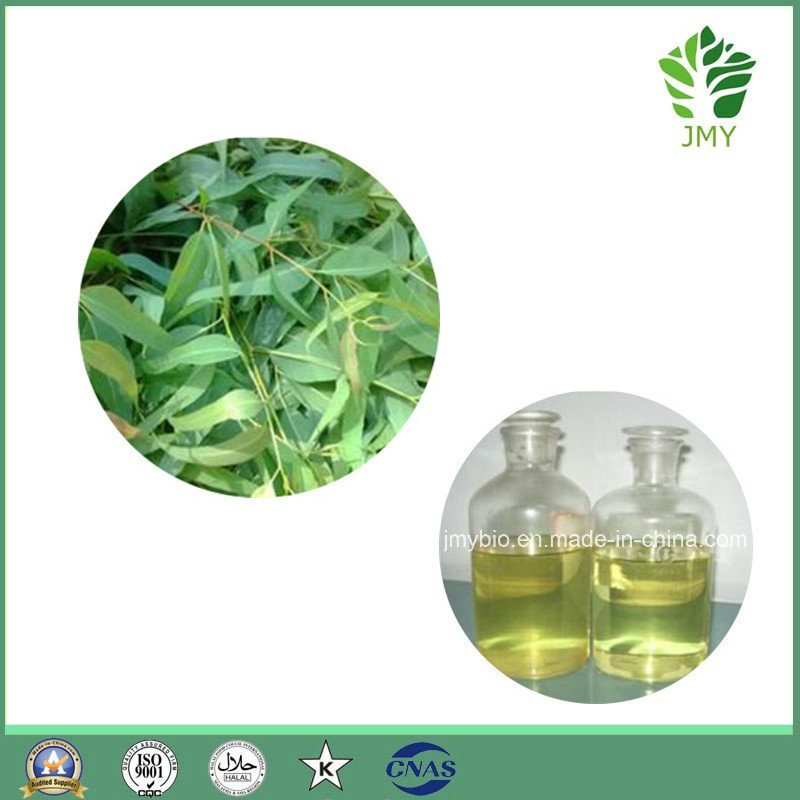 Hot Product Pure Eucalyptus Essential Oil, Cineole 80%, Flavor Oil
