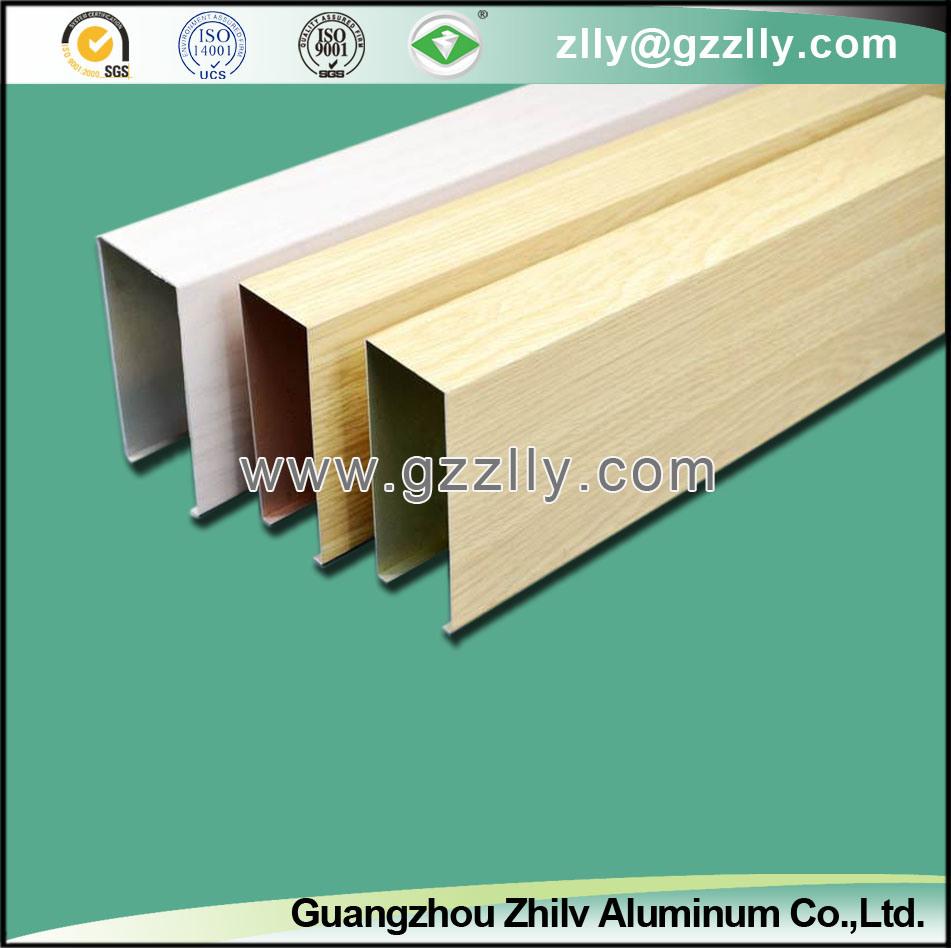 Contemporary Baffle Ceiling Design